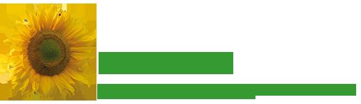 Balsam24-Logo